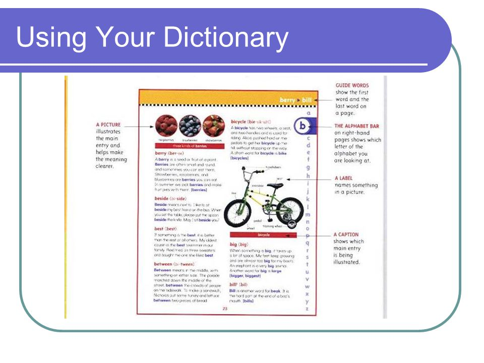 Using Your Dictionary