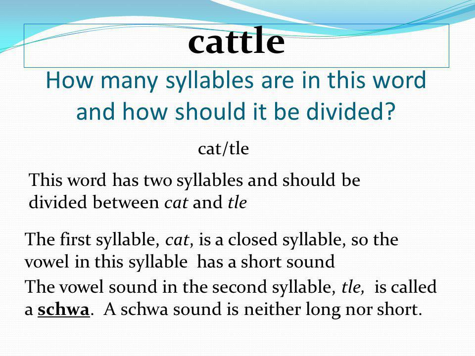 How many syllables are in this word and how should it be divided