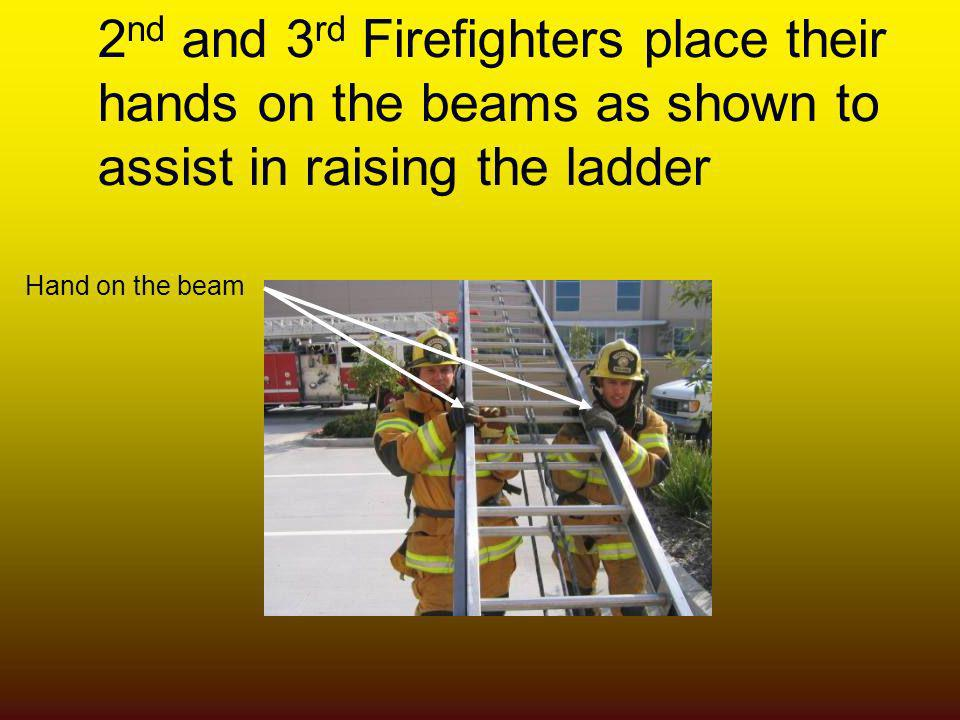 2nd and 3rd Firefighters place their hands on the beams as shown to assist in raising the ladder