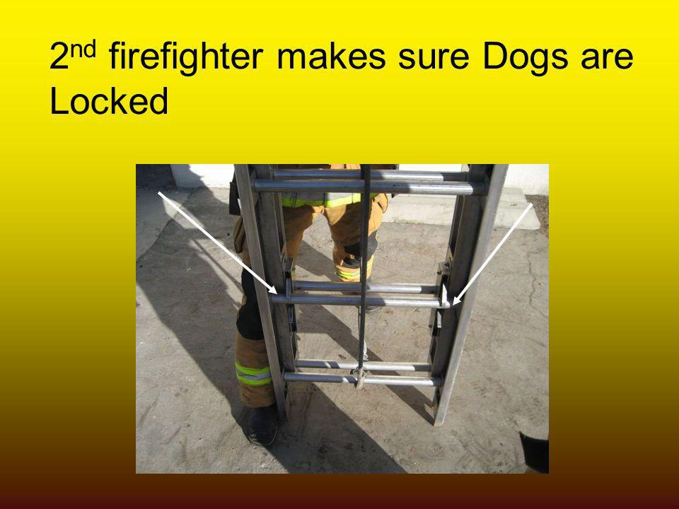 2nd firefighter makes sure Dogs are