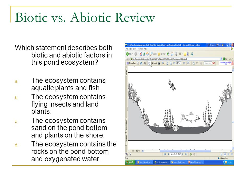 biotic and abiotic influences on the