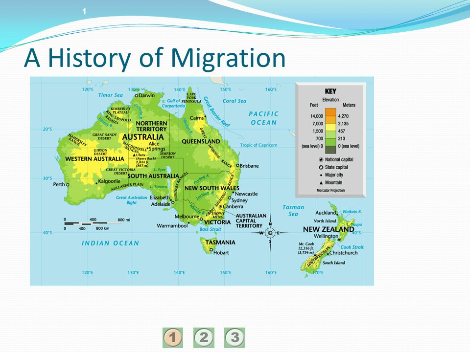 1 A History of Migration