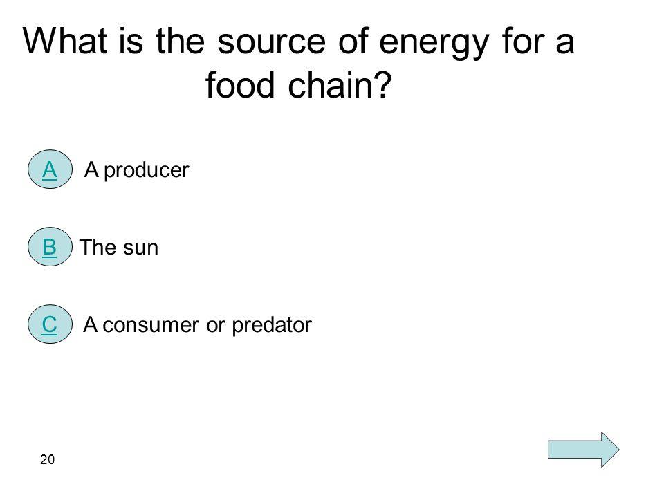 What is the source of energy for a food chain