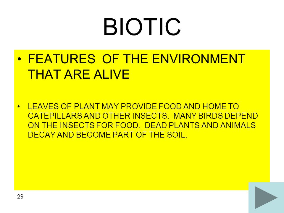 BIOTIC FEATURES OF THE ENVIRONMENT THAT ARE ALIVE