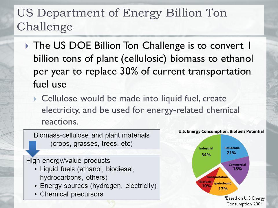 US Department of Energy Billion Ton Challenge