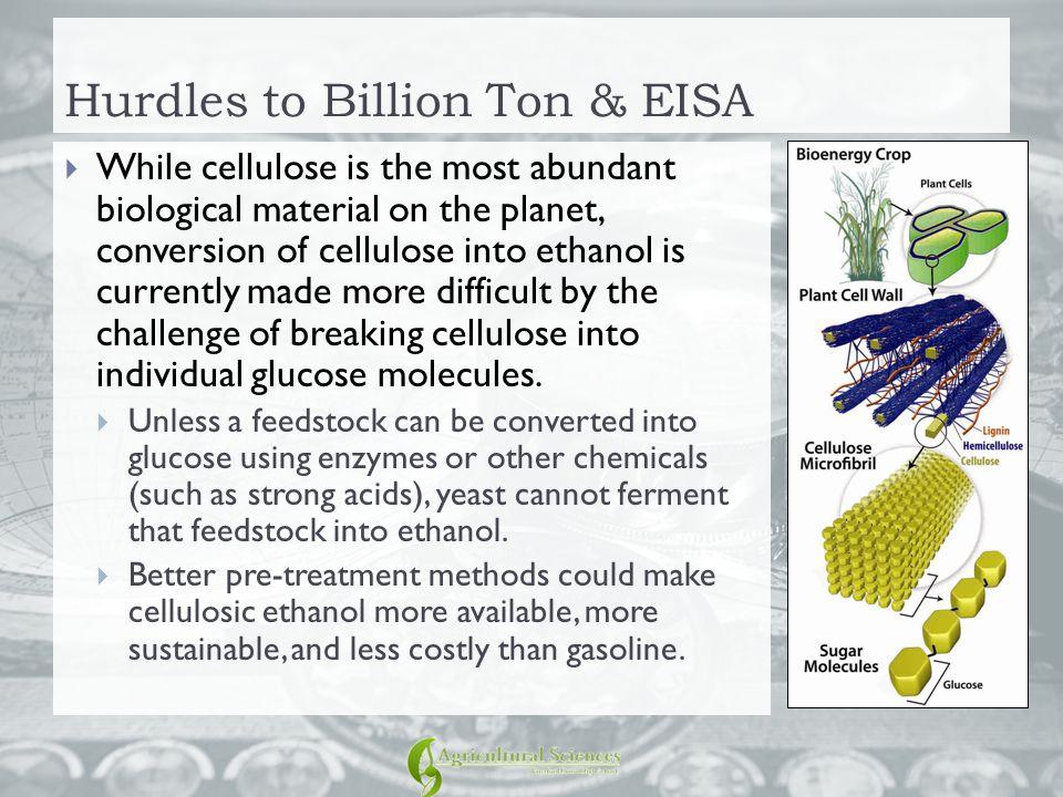 Hurdles to Billion Ton & EISA