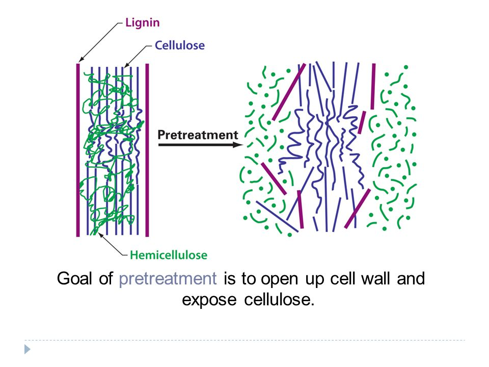 Goal of pretreatment is to open up cell wall and expose cellulose.