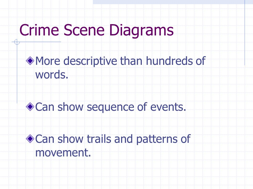Crime Scene Diagrams More descriptive than hundreds of words.