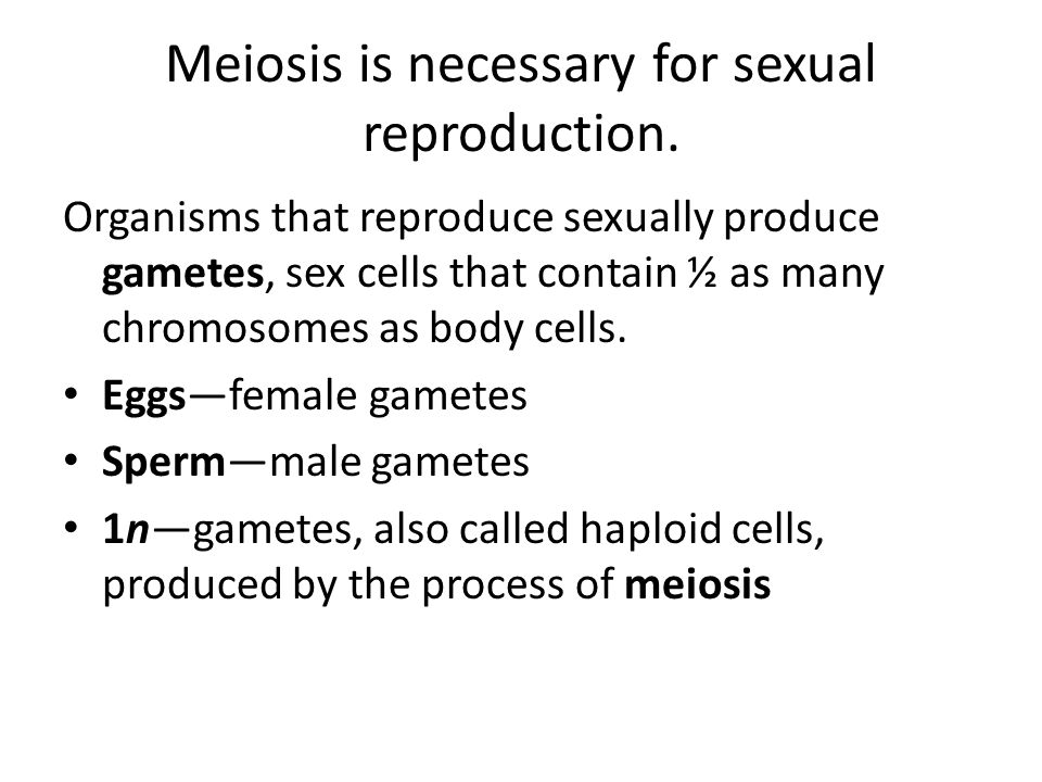 Meiosis is necessary for sexual reproduction.