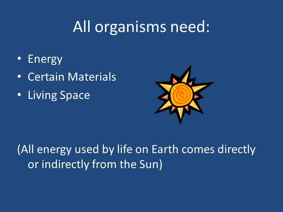 All organisms need: Energy Certain Materials Living Space