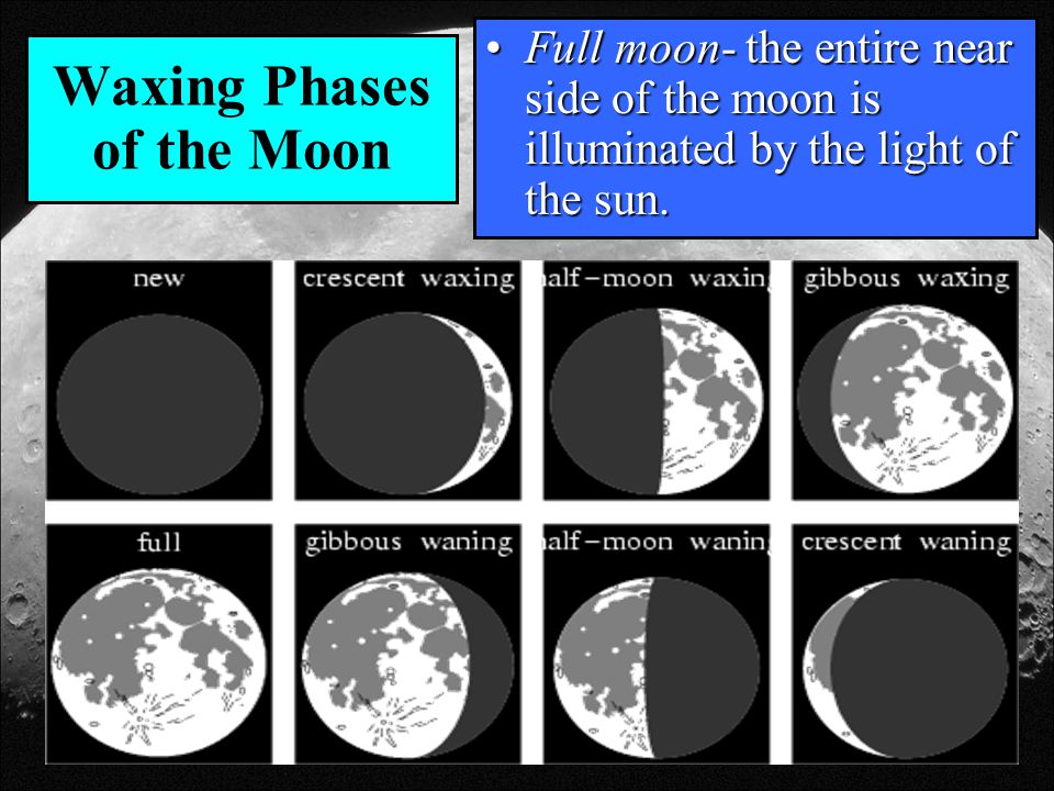 Waxing Phases of the Moon