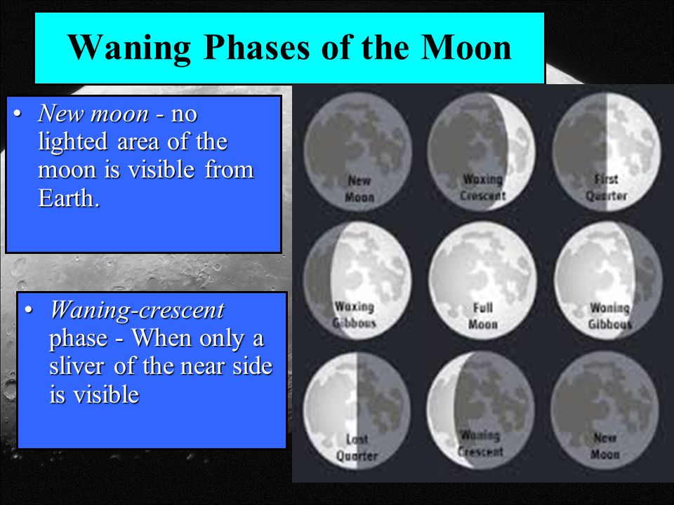 Waning Phases of the Moon