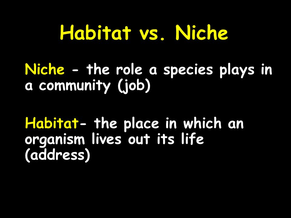 Habitat vs. Niche Niche - the role a species plays in a community (job) Habitat- the place in which an organism lives out its life (address)