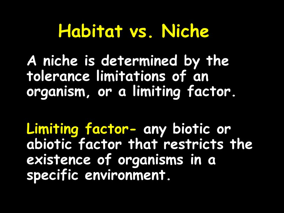 Habitat vs. Niche A niche is determined by the tolerance limitations of an organism, or a limiting factor.