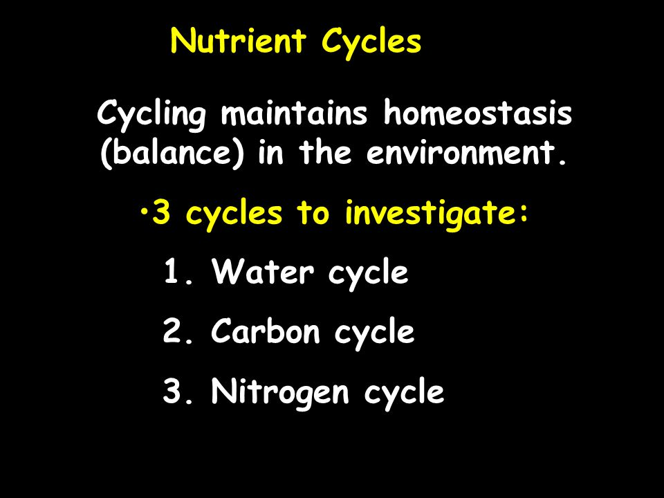 Cycling maintains homeostasis (balance) in the environment.