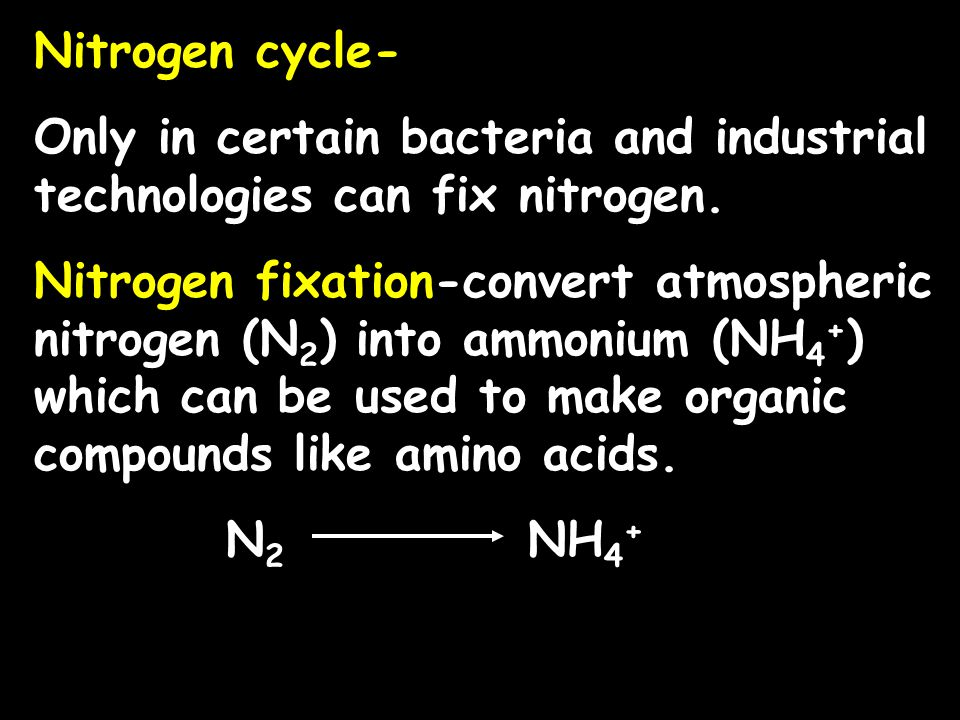 Nitrogen cycle- Only in certain bacteria and industrial technologies can fix nitrogen.