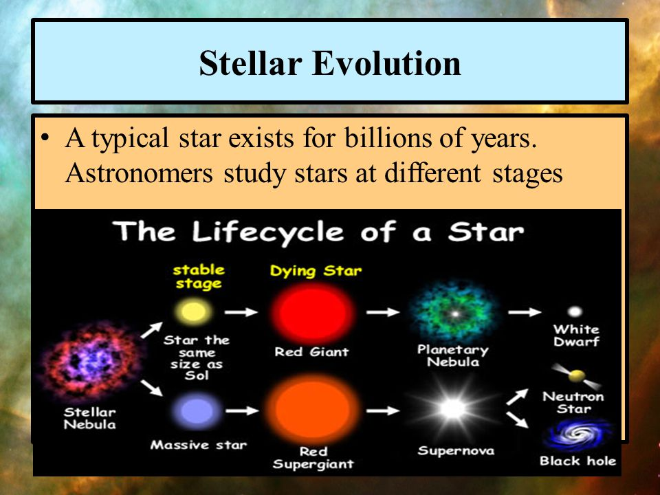Stellar Evolution A typical star exists for billions of years.