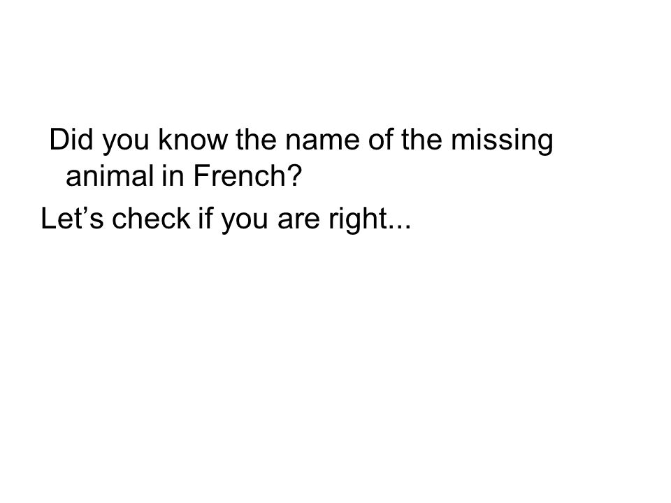Did you know the name of the missing animal in French