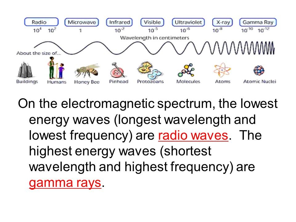 On the electromagnetic spectrum, the lowest energy waves (longest wavelength and lowest frequency) are radio waves.