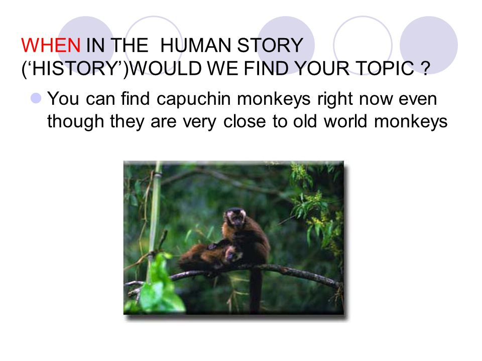 WHEN IN THE HUMAN STORY ('HISTORY')WOULD WE FIND YOUR TOPIC