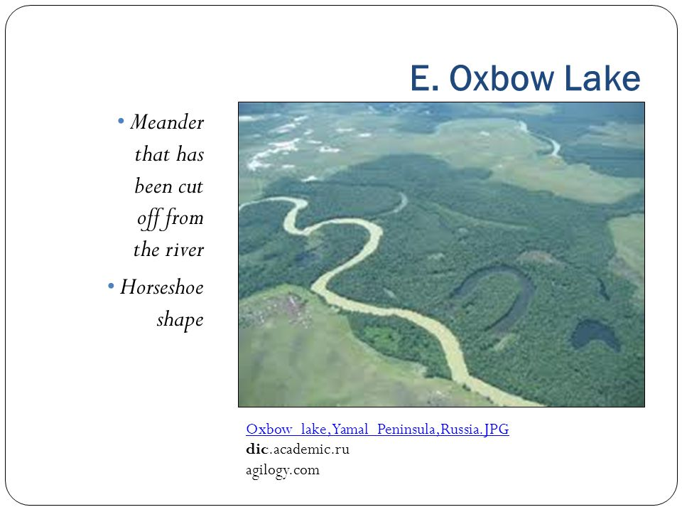 E. Oxbow Lake Meander that has been cut off from the river