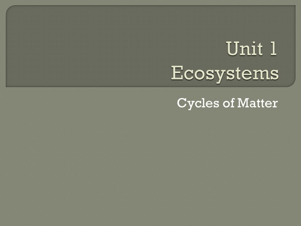 Unit 1 Ecosystems Cycles of Matter