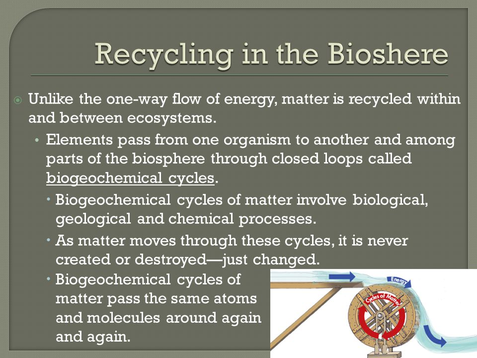 Recycling in the Bioshere