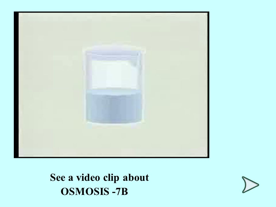 See a video clip about OSMOSIS -7B