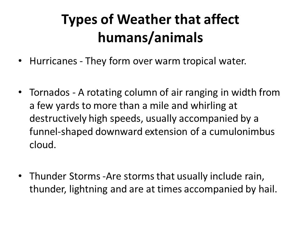 Types of Weather that affect humans/animals