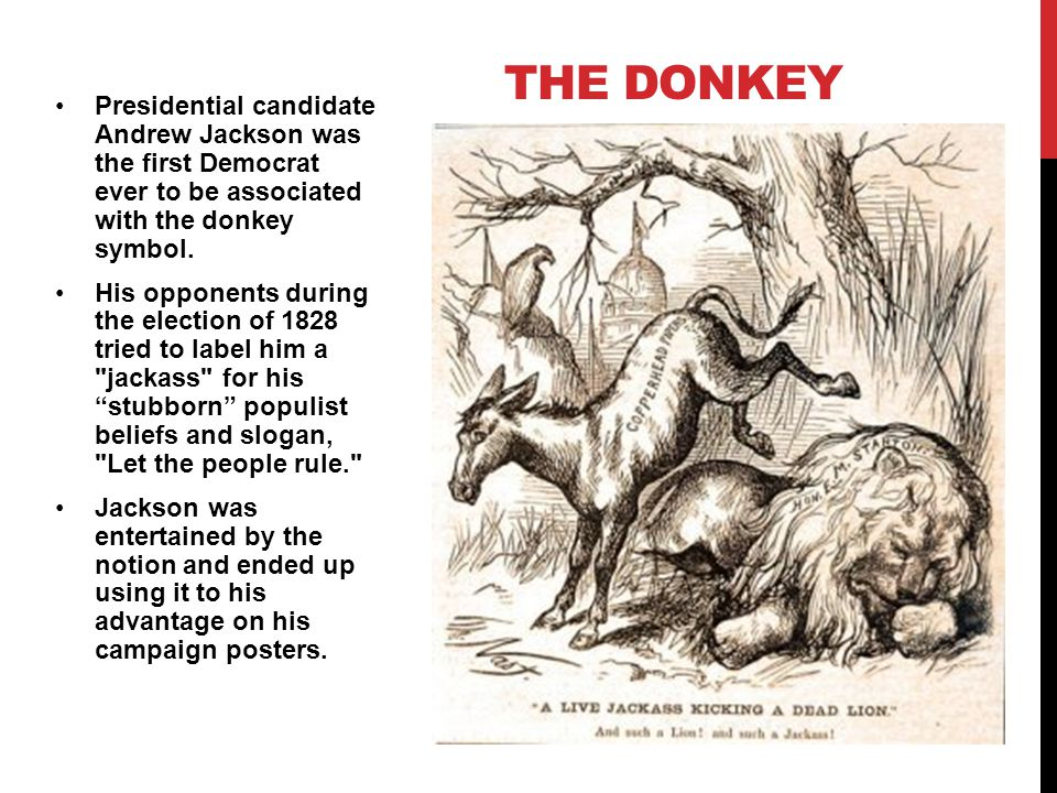 Presidential candidate Andrew Jackson was the first Democrat ever to be associated with the donkey symbol.