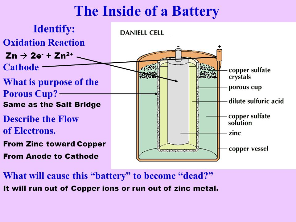 The Inside of a Battery Identify: Oxidation Reaction Cathode