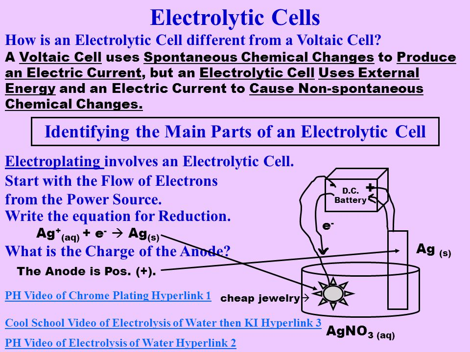 Identifying the Main Parts of an Electrolytic Cell
