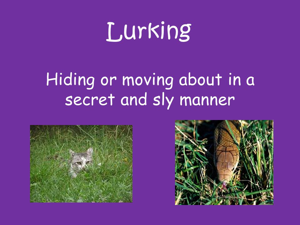 Hiding or moving about in a secret and sly manner