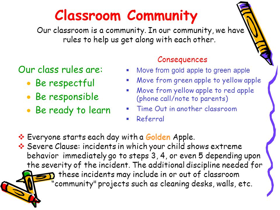 Classroom Community Our class rules are: Be respectful Be responsible