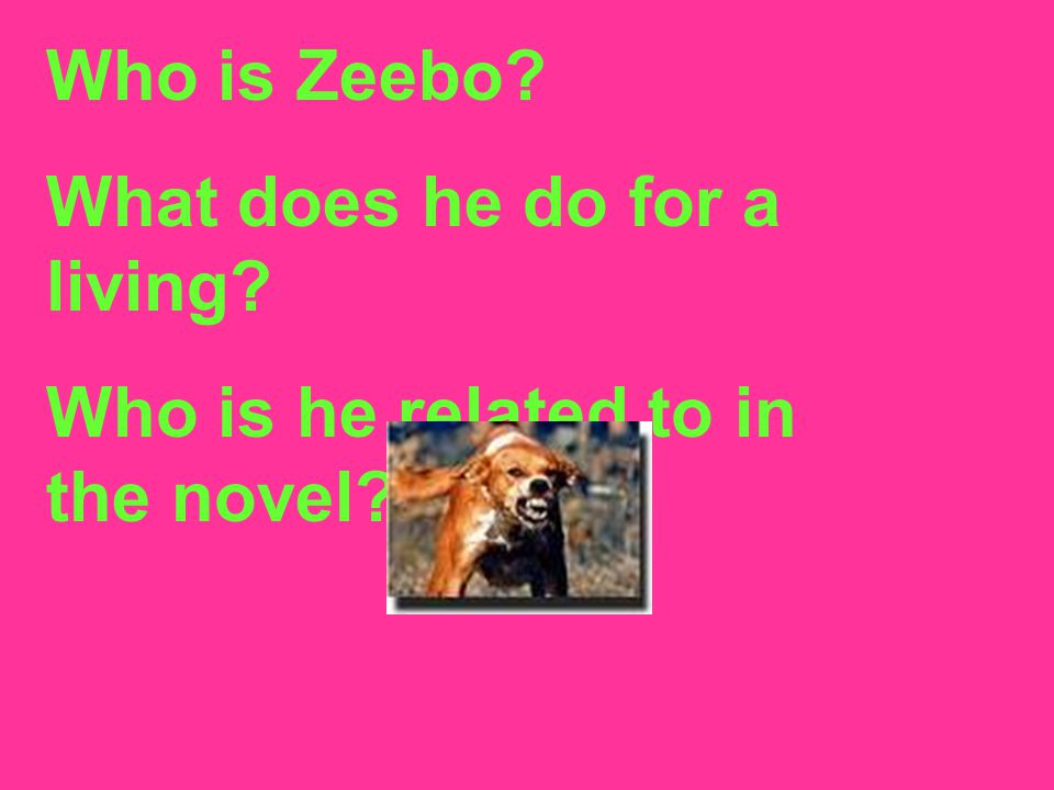 Who is Zeebo What does he do for a living Who is he related to in the novel