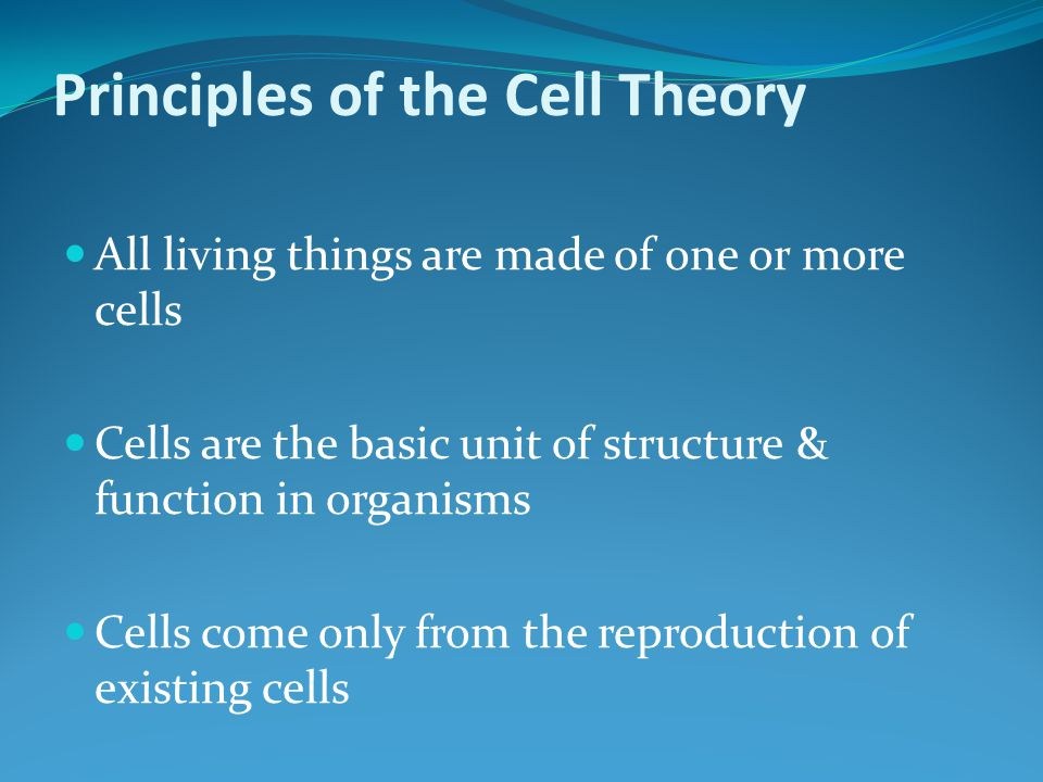 Principles of the Cell Theory