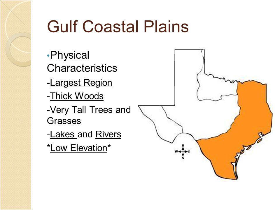 Gulf Coastal Plains Physical Characteristics -Largest Region
