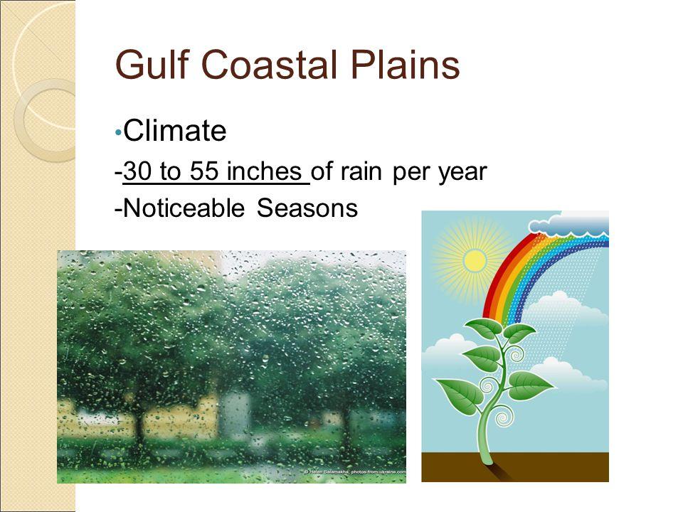 Gulf Coastal Plains Climate -30 to 55 inches of rain per year