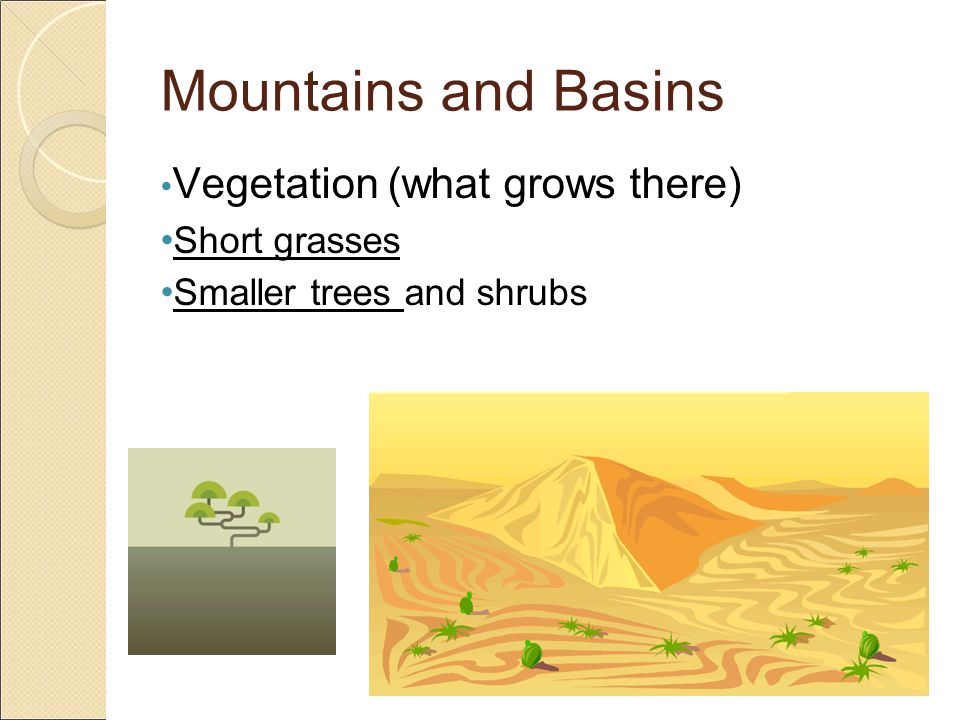 Mountains and Basins Vegetation (what grows there) Short grasses