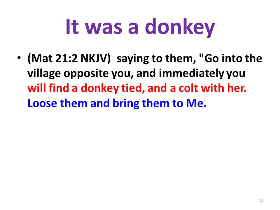 It was a donkey