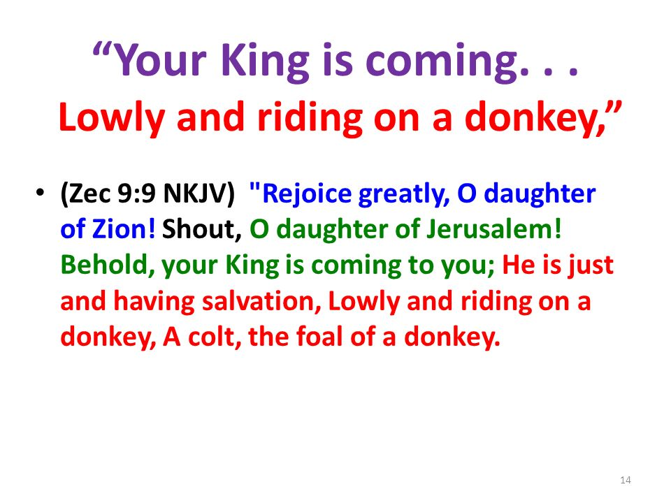 Your King is coming. . . Lowly and riding on a donkey,