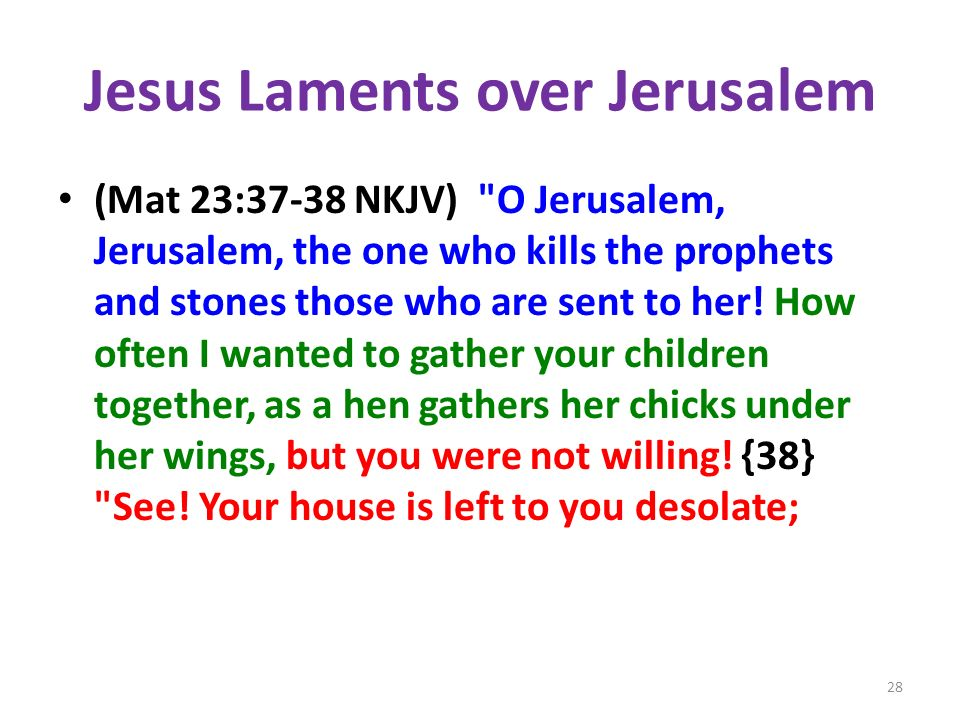 Jesus Laments over Jerusalem