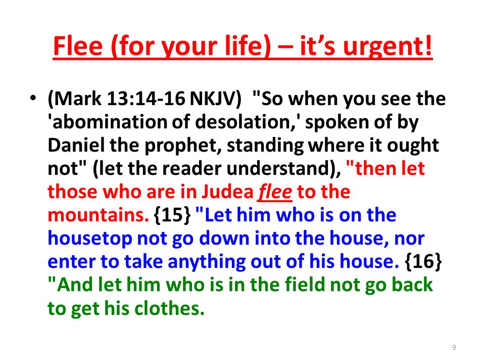Flee (for your life) – it's urgent!