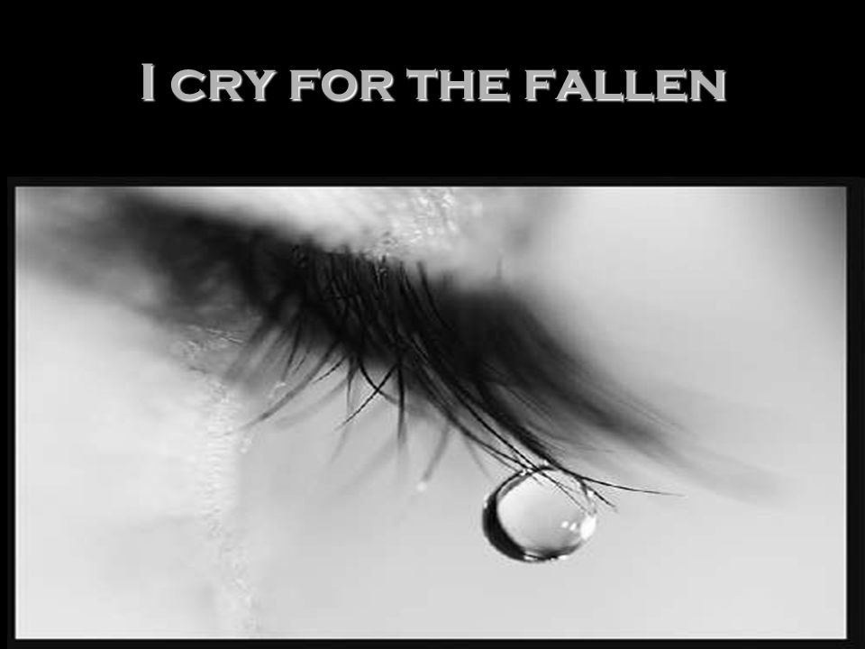 I cry for the fallen