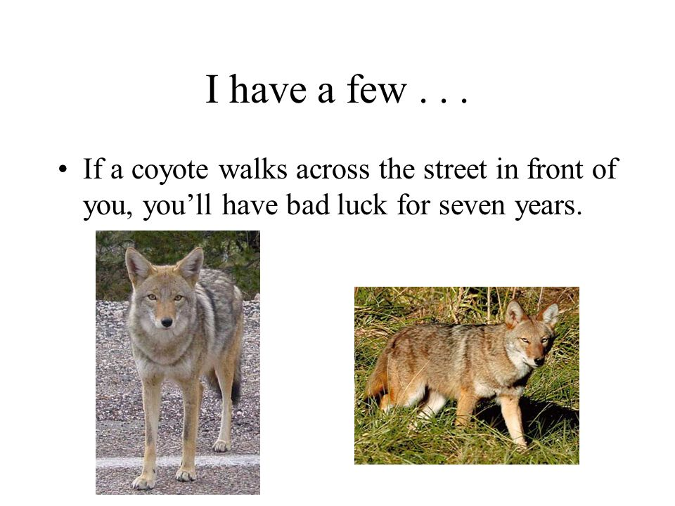 I have a few .