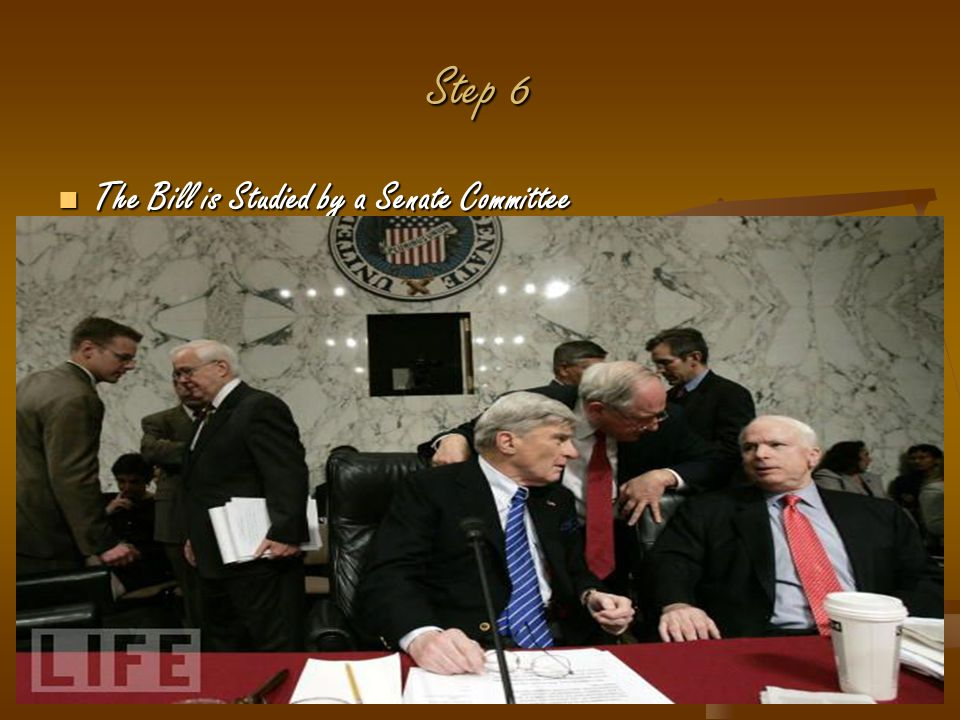 Step 6 The Bill is Studied by a Senate Committee