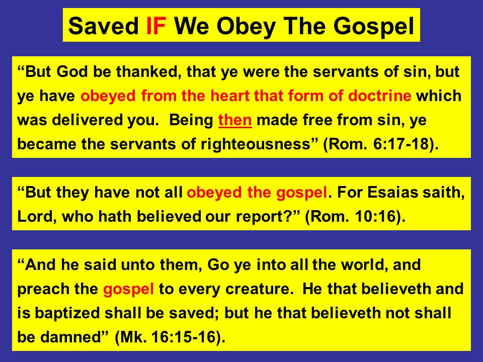 Saved IF We Obey The Gospel
