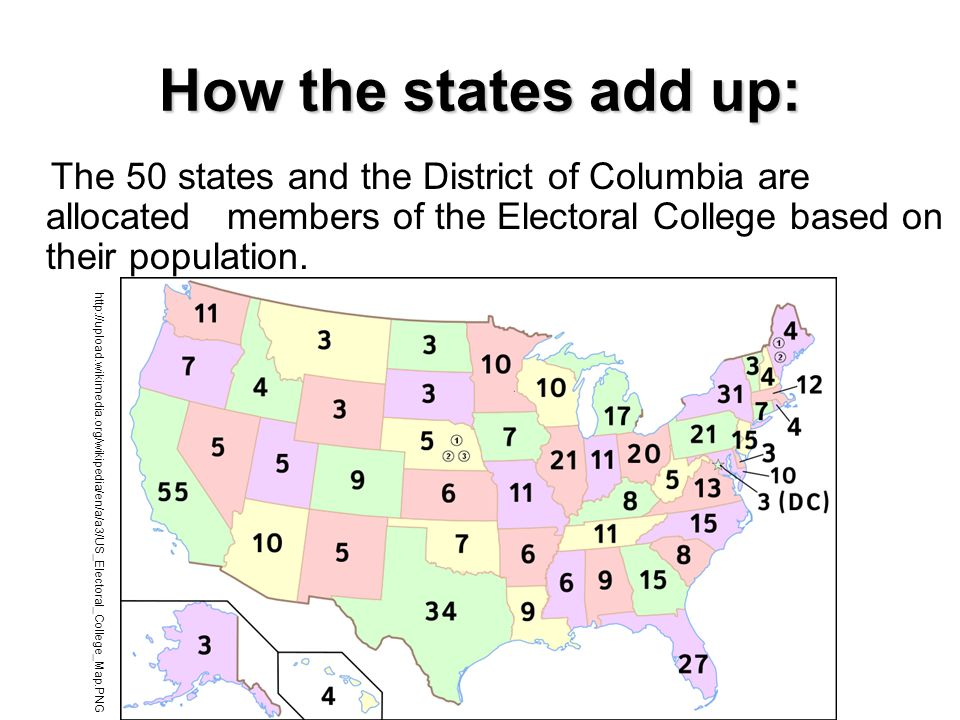 How the states add up: The 50 states and the District of Columbia are allocated members of the Electoral College based on their population.