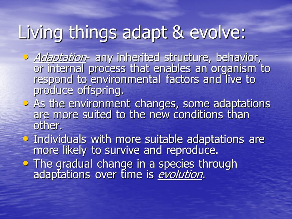 Living things adapt & evolve:
