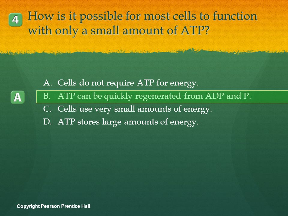 How is it possible for most cells to function with only a small amount of ATP